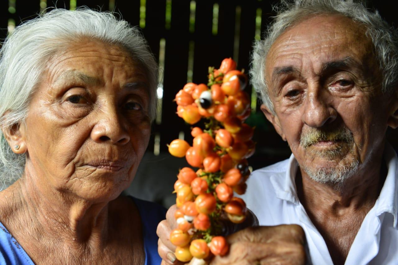 """Maués, o """"Caribe Amazonense"""" regado pela energia do guaraná"""